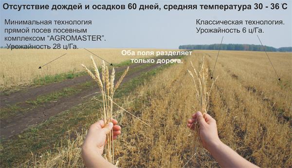 Ресурсосберегающая технология выращивания ярового ячменя 53