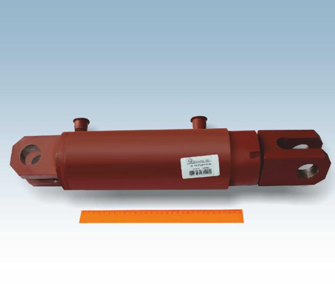 Гидроцилиндр ЦГ-100.50х200.01-02